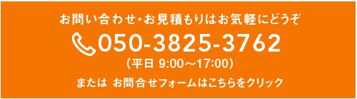 contact_top_1